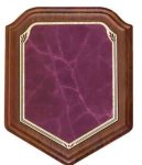 Shield Walnut Plaque with Burgundy Marble Plate Achievement Awards