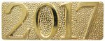 Gold Metal Chenille Letter Insignia Pin 2017 Lapel Pins